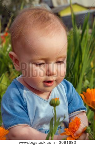 Child Touches Flower