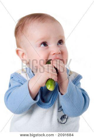 Small Boy Eats Fresh Cucumber