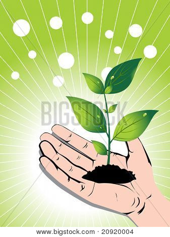 growing green plant in a hand, vector illustration