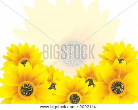 Ilustración de vector amarillo girasol agradable