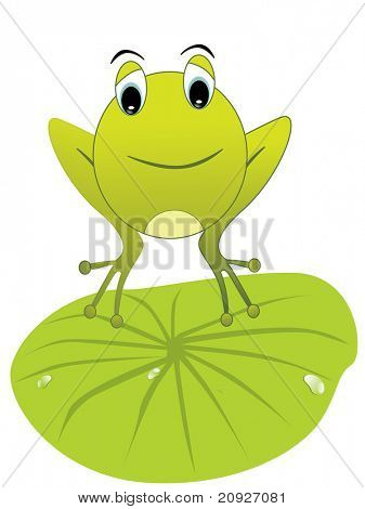 vector illustration of a happy frog