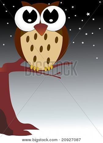 night background with owl sit on branch