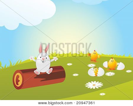 meadow background with chicken broken egg and egg sit on wood