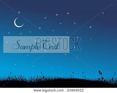 abstract garden background in night, illustration