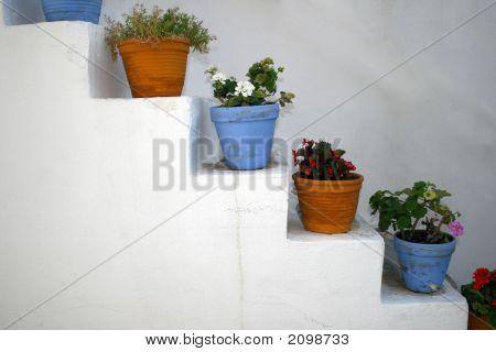 Flower Pots - Paros, Greece