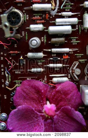Electronic And Flower