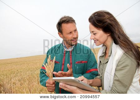 Agronomist with farmer looking at wheat ears