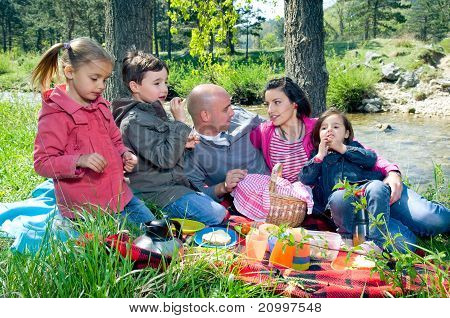 Young Family Having Picnic