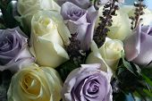 stock photo of white purple  - Beautiful white and purple roses in bloom arranged in bouquet - JPG