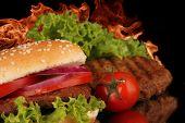 Hot spicy hamburger poster