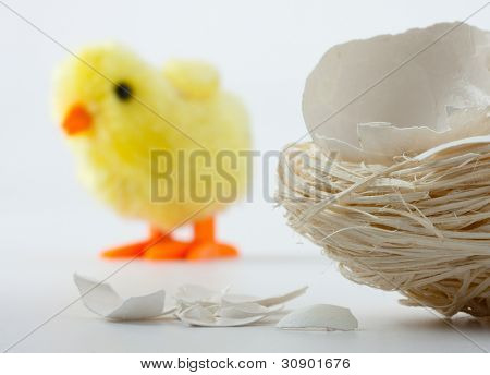 Nest with eggshell cracks and newborn toy chicken behind