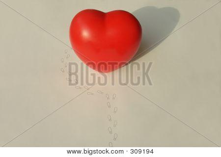 Back Door Of The Heart