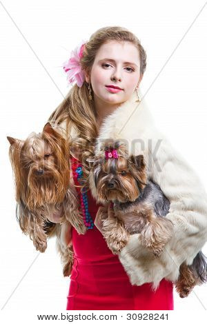 Girl  In Red With Two Yorkshire Terriers On Isolated White