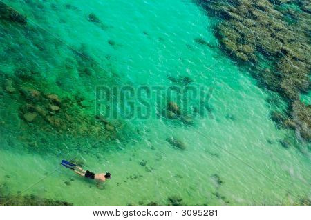 Snorkeler Swimming Over Coral Reef