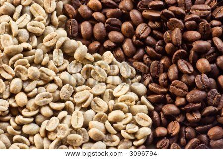 Coffee Beans 07