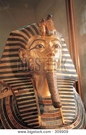 Scene Of Egypt