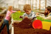 Pure Soil. Pure Soil Enrichment. Small Boy Work With Pure Soil. Pure Soil In Greenhouse. Gardening poster