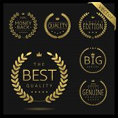 Golden Laurel Wreath Label Badge Set Isolated. Best Quality, Best Offer, Best Buy. Vector Illustrati poster