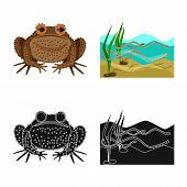 Vector Design Of Wildlife And Bog Sign. Set Of Wildlife And Reptile Stock Vector Illustration. poster