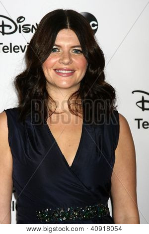 LOS ANGELES - JAN 10:  Casey Wilson attends the ABC TCA Winter 2013 Party at Langham Huntington Hotel on January 10, 2013 in Pasadena, CA