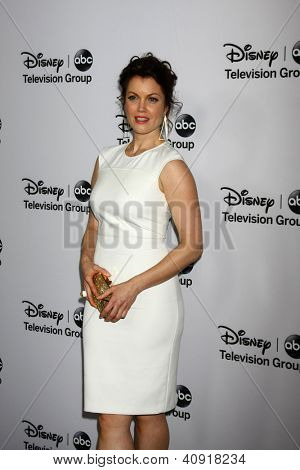 LOS ANGELES - JAN 10:  Bellamy Young attends the ABC TCA Winter 2013 Party at Langham Huntington Hotel on January 10, 2013 in Pasadena, CA