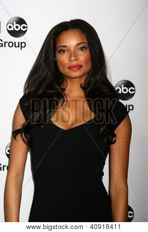 LOS ANGELES - JAN 10:  Rochelle Aytes attends the ABC TCA Winter 2013 Party at Langham Huntington Hotel on January 10, 2013 in Pasadena, CA