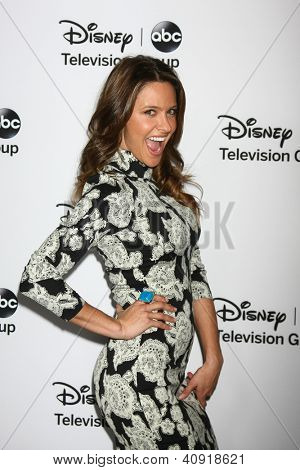 LOS ANGELES - JAN 10:  Jill Wagner attends the ABC TCA Winter 2013 Party at Langham Huntington Hotel on January 10, 2013 in Pasadena, CA