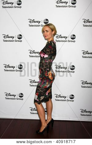 LOS ANGELES - JAN 10:  Radha Mitchell attends the ABC TCA Winter 2013 Party at Langham Huntington Hotel on January 10, 2013 in Pasadena, CA