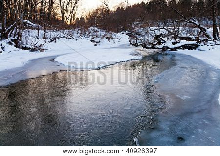 Icebound Banks Of Forest Pond