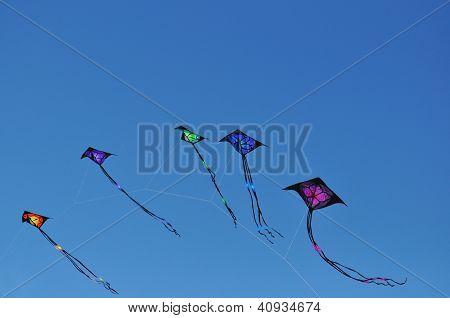 Colored Kites