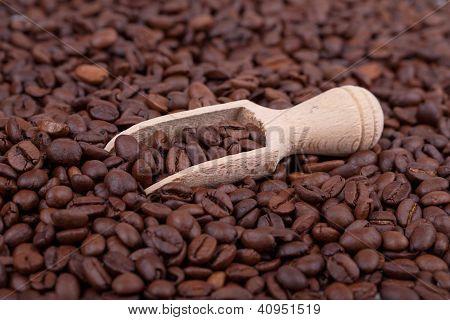 Granos de café y madera Scoop