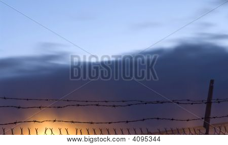 Barbed Wire On Fire