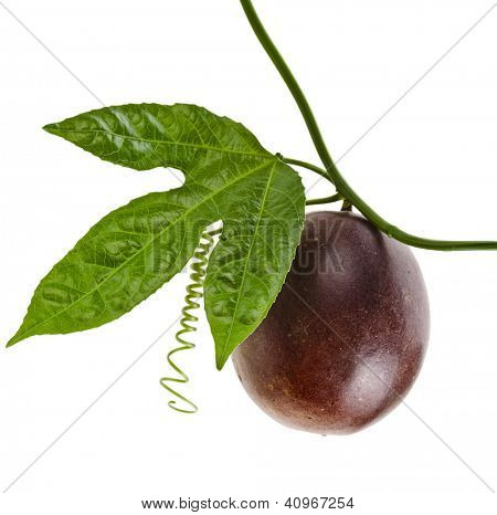 Passion fruit on a white background
