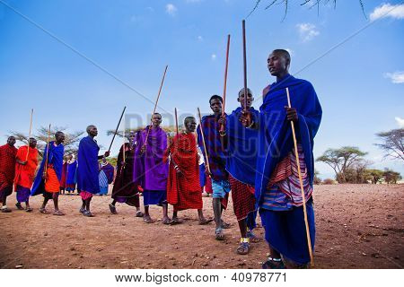 Maasai village, TANZANIA, AFRICA - DECEMBER 11: A group of Maasai men performing their ritual dance in traditional clothes in their village on December 11, 2012 in Tanzania.