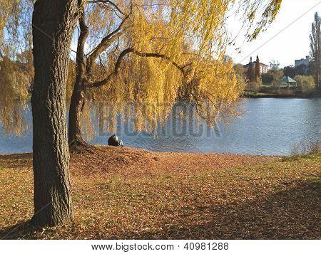 Couple On A Lake 2