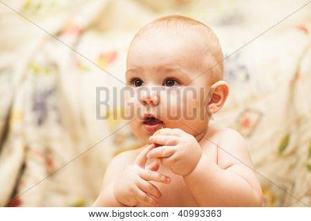 Pouco criança comendo biscoito