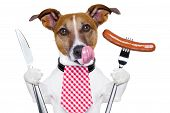 foto of licking  - hungry dog with sausage for dinner knife and fork - JPG