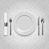 Dinner plate with cutlery and napkin, eps10 vector