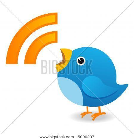 Pájaro gritando