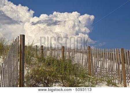 Tall Dunes At The Beach With Thunderhead Cloud