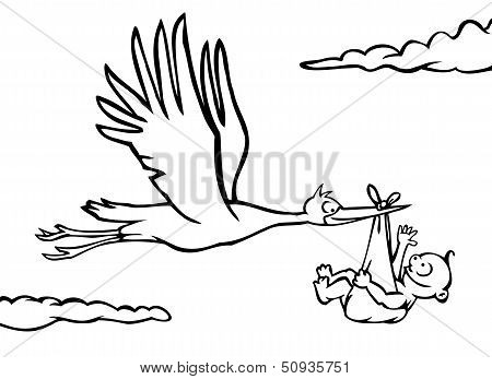Black and white stork with baby