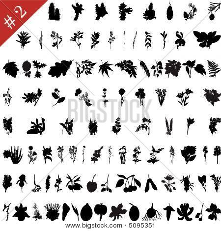 Plants Silhouettes Set