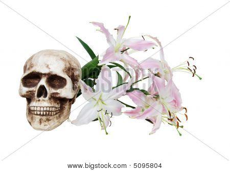 Pink And White Lilies And Skull