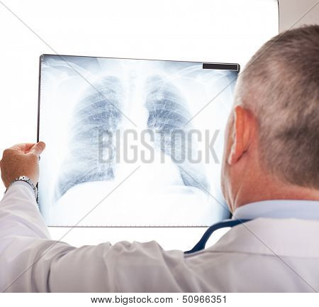 Portrait of a doctor looking at a radiography