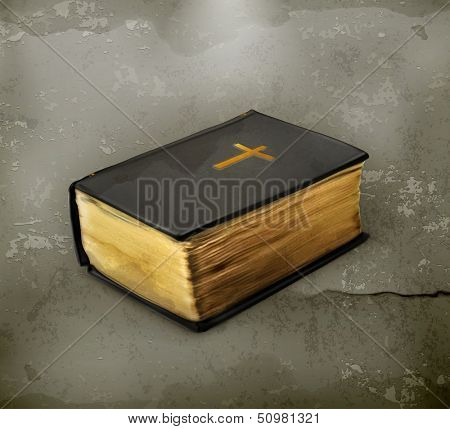 Bible old style vector