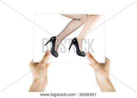 Photo Of Two Pretty Woman Legs