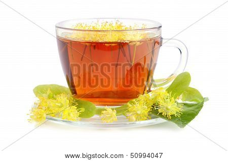Linden Tea In Cup