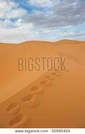 Footprints In Sand Dunes Of Erg Chebbi, Morocco