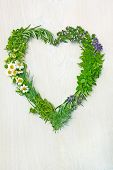 pic of feverfew  - heart shaped from fresh herbs on wooden background - JPG