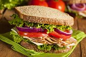 foto of whole-wheat  - Homemade Turkey Sandwich with Lettuce Tomato and Onion - JPG